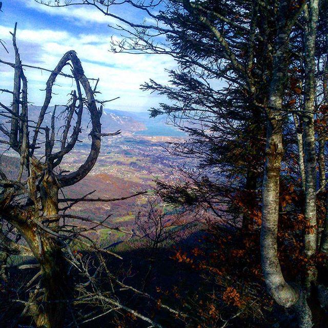 En attendant la neige, petit souvenir de la rando de la semaine dernière. #massifchartreuse #lacdubourget #chambéry #cognin #montagnes #mountains