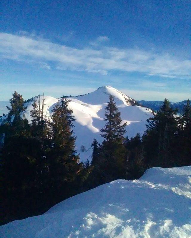 Petite sortie pour trouver le soleil quand les vallées sont sous une épaisse couche de nuages. #snow #massifchartreuse #montagnes #mountains #mountainlife #hiver #winter